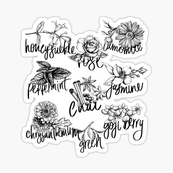 Types of tea 2 Sticker