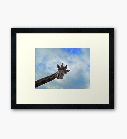 Yo! You down there! Framed Print