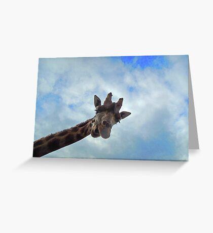 Yo! You down there! Greeting Card
