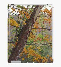 Cuyahoga Camouflage iPad Case/Skin