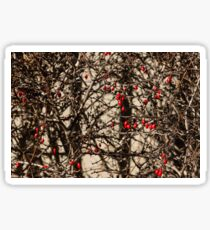 Thorny Patterns - Jewel Toned Berries by the Fence Sticker