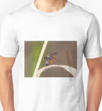 Decisive Moment FLy T-Shirt
