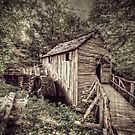 Cades Cove Mill by LarryB007