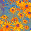 Beautiful Wild Summer by OLIVIA JOY STCLAIRE