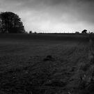 Moonlight farming landscape by Martyn Franklin