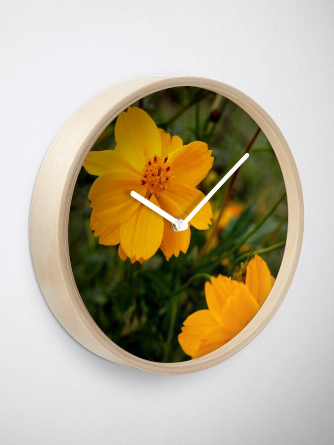 Alternate view of Golden Coreopsis from A Gardener's Notebook Clock