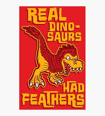 Real dinosaurs had feathers Photographic Print
