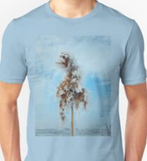 reed under snow T-Shirt
