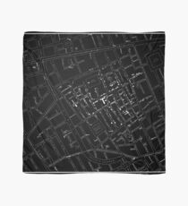 John Snow's Cholera Map (white-on-black) Scarf