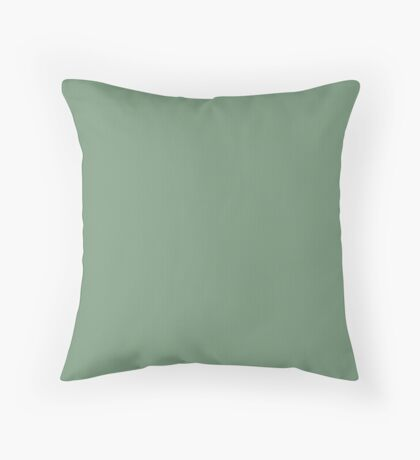 Sage Weave by Julie Everhart Throw Pillow