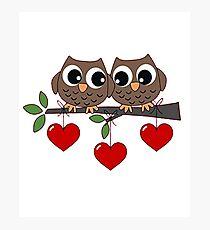 2 Owls My Valentine Day Photographic Print