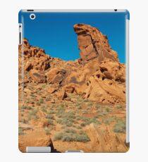 USA Nature 1 iPad Case/Skin