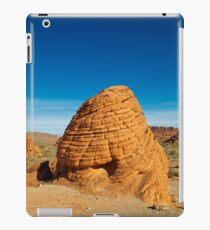 USA Nature 2 iPad Case/Skin
