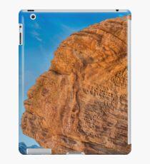 USA Nature 5 iPad Case/Skin