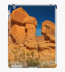 USA Nature 6 iPad Case/Skin