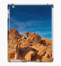 USA Nature 7 iPad Case/Skin