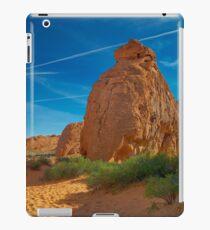 USA Nature 8 iPad Case/Skin