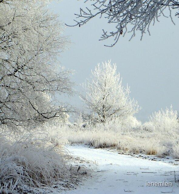Winter Fairytale by ienemien