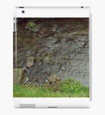 Rural river iPad Case/Skin