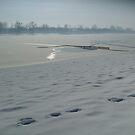 Winter on the Lake by Ana Belaj