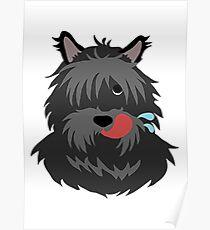 shaggy dog Poster