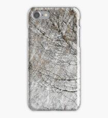 20.1.2017: Tree in snowfall II iPhone Case/Skin