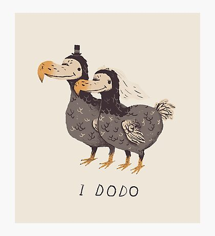 i dodo Photographic Print