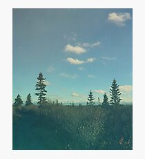 Up North Photographic Print