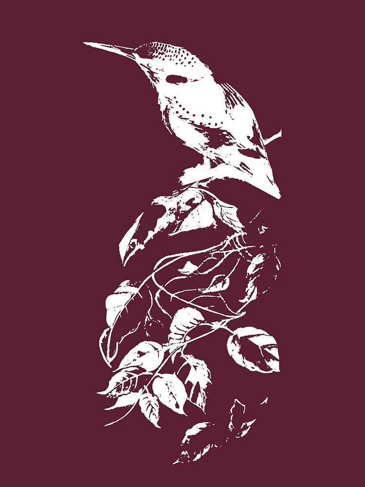 Kingfisher by PenelopeJane
