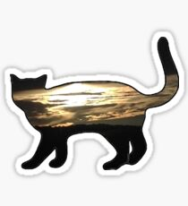 Cat with Sunset  Sticker