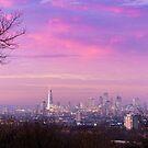 London Skyline by Mattia  Bicchi Photography