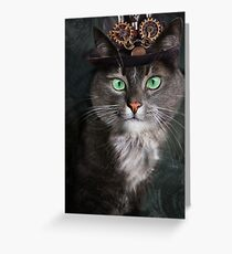 Steampunk Funny Cute Cat 3 Greeting Card