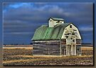 Stormy Thursday by Sheryl Gerhard