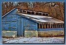 The Blue Hen House by Sheryl Gerhard