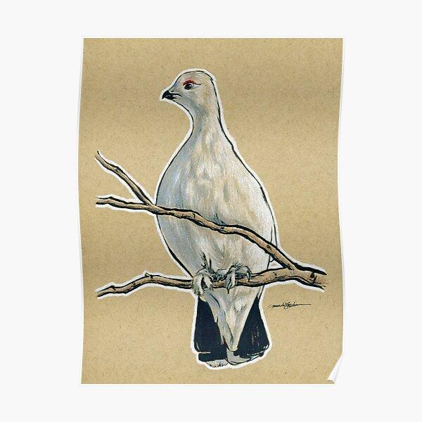 State Bird Series:  Alaska - Willow Ptarmigan Poster