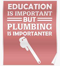 Plumbing Is Importanter Poster