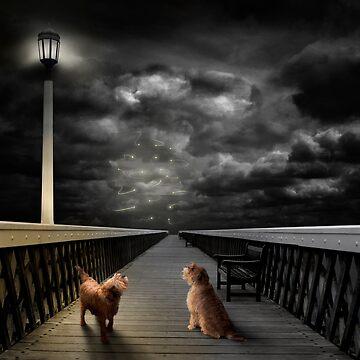 Dogs on a Jetty by Kilbracken