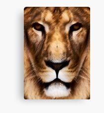 Animal King Canvas Print