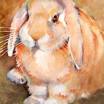 Beefa Bunny Rabbit by PenelopeJane