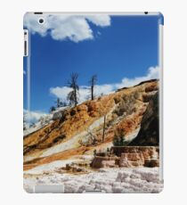 Summer and Winter is coming iPad Case/Skin