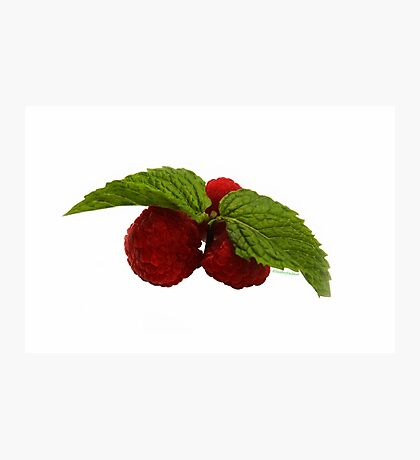 Three Berries + Two Leaves!! Photographic Print