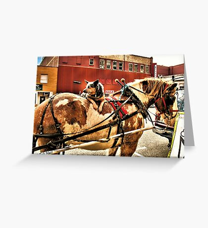 """""""Smart Dog: Lets the Horse Do All the Walkin'""""... prints and products Greeting Card"""