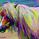 Painted Pony by Bunny Clarke