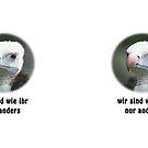 Wollkopfgeier für gleiche Bürgerrechte by Thomas F. Gehrke