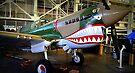 Flying Tiger AVG by Bob Moore