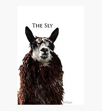 The Sly Photographic Print