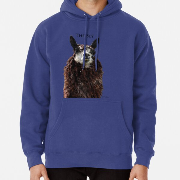 The Sly Pullover Hoodie