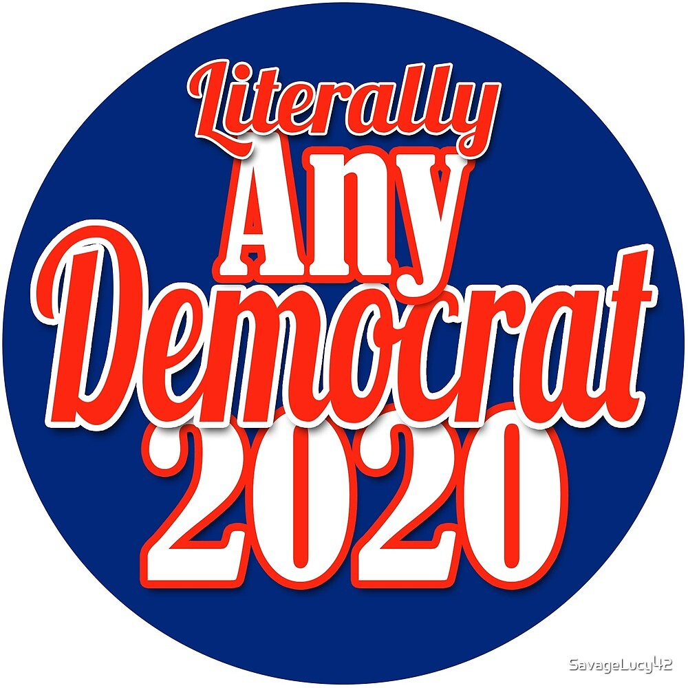 Image result for vote democrat 2020