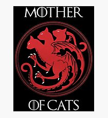 Mother of Cats Photographic Print