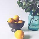 Lemons and Eucalyptus by OLIVIA JOY STCLAIRE